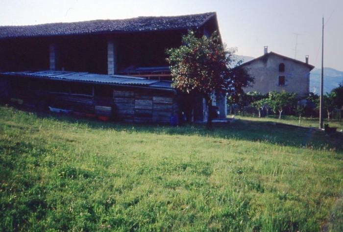 1984_07_11 Pancarale